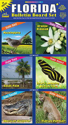 Florida Bulletin Board Set- NEW