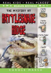 The Mystery at Rattlesnake Ridge