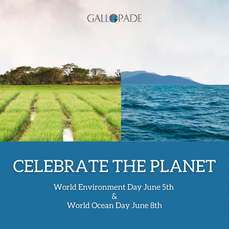 Celebrate World Environment Day + World Ocean Day in June
