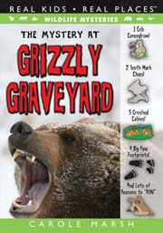 The Mystery at Grizzly Graveyard