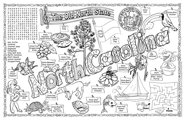 North Carolina Symbols Facts Funsheet Pack Of 30